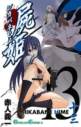 http://www.square-enix.com/jp/magazine/top/img/shoei/9784757529335.jpg