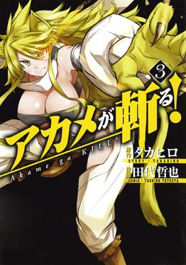 http://www.square-enix.com/jp/magazine/top/img/shoei/9784757532380.jpg